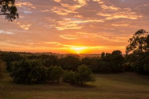 Sun-Farm Sunrise