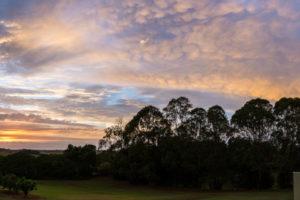 Sun-Farm Sunrise (2)