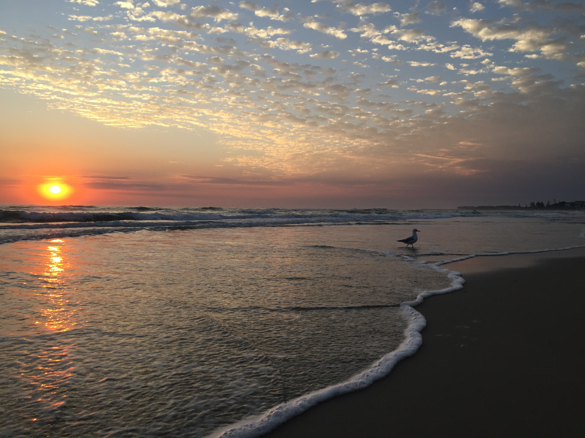 Sun-iPhone Sunrise